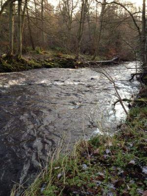 The river Esk, at Hawthornden Castle